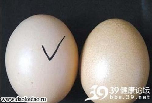 Куриное яйцо без курицы