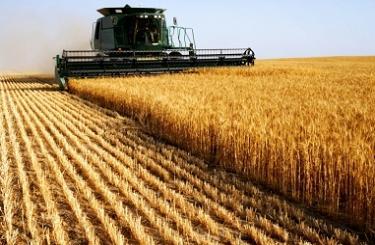 EXP.IDK.RU. Назарбаев подписал закон, касающийся электронных зерновых расписок