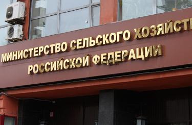 EXP.IDK.RU. Минсельхоз РФ: рынок зерна стабилен за счёт экспортной пошлины на пшеницу