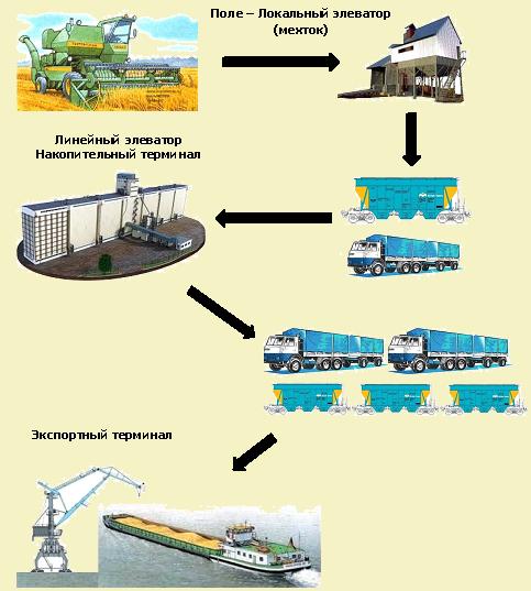 Рисунок 12. Схема транспортно-логистической инфраструктуры экспорта зерновых в РФ