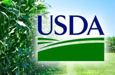 Фуражные зерновые: мировые рынки и торговля – отчет USDA, август 2017
