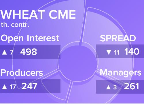 Отчет по открытому интересу. Пшеница, CME Group на 11.08.2018