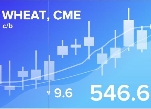 Прогноз ценовых колебаний с 13 по 17 августа 2018