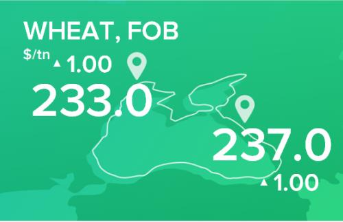 Пшеница. Цены FOB. Данные на 22.10.2018