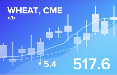 Прогноз ценовых колебаний с 15 по 19 октября 2018