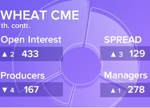 Отчет по открытому интересу. Пшеница, CME Group на 22.12.2018