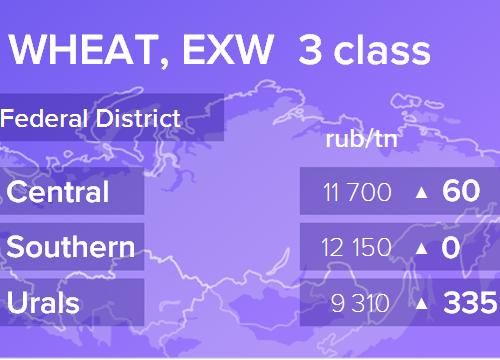 Пшеница. Цены EXW. Россия. Данные на 22.01.2019