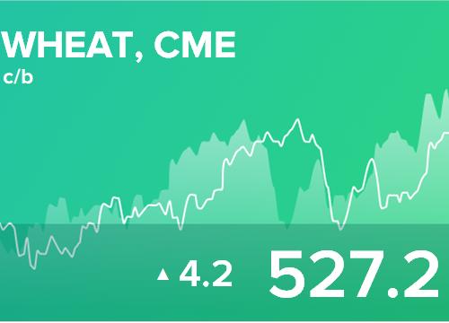 Ежедневный прогноз ценовых колебаний на 24 января 2019