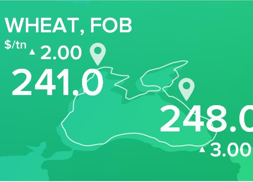 Пшеница. Цены FOB. Данные на 28.01.2019