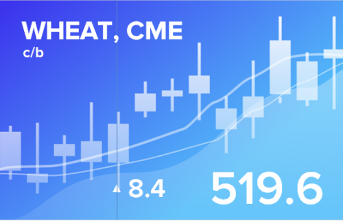 Прогноз ценовых колебаний с 14 по 18 января 2019