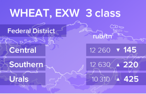 Пшеница. Цены EXW. Россия. Данные на 15.02.2019