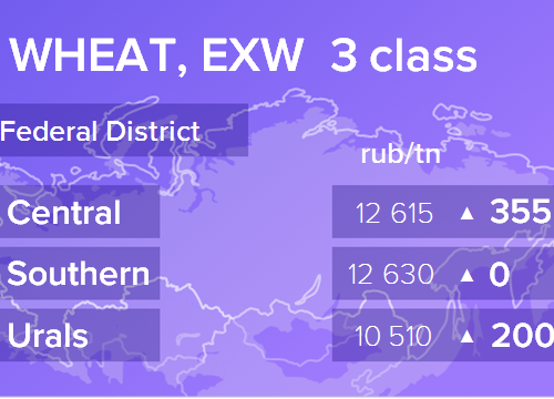 Пшеница. Цены EXW. Россия. Данные на 22.02.2019