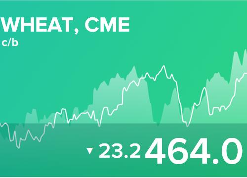 Ежедневный прогноз ценовых колебаний на 26 февраля 2019