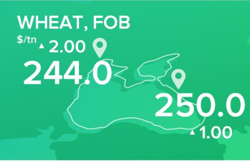 Пшеница. Цены FOB. Данные на 11.02.2019