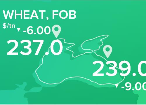 Пшеница. Цены FOB. Данные на 25.02.2019