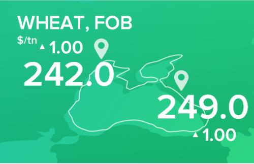 Пшеница. Цены FOB. Данные на 04.02.2019