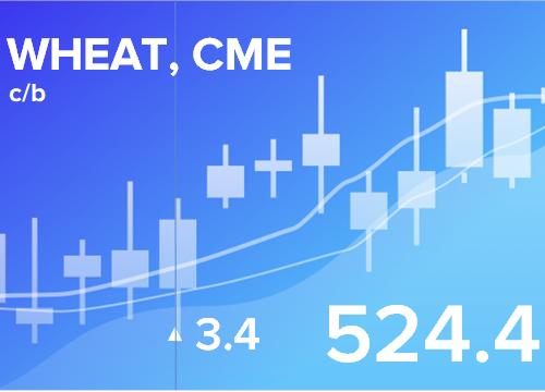 Прогноз ценовых колебаний с 4 по 8 февраля 2019