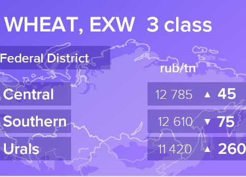Пшеница. Цены EXW. Россия. Данные на 07.03.2019