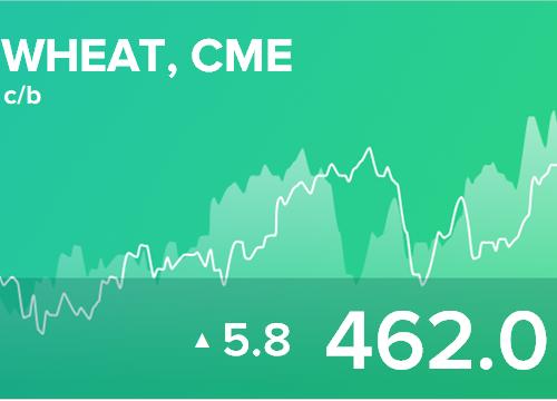 Ежедневный прогноз ценовых колебаний на 6 марта 2019
