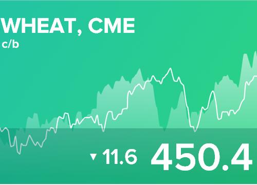 Ежедневный прогноз ценовых колебаний на 7 марта 2019