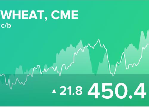 Ежедневный прогноз ценовых колебаний на 13 марта 2019