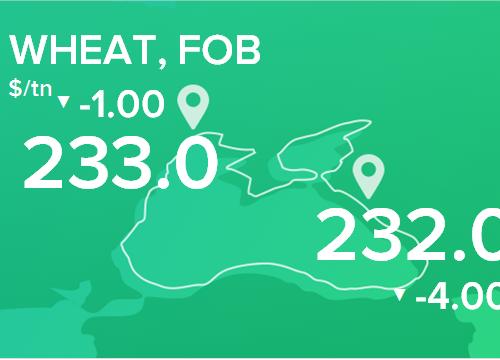 Пшеница. Цены FOB. Данные на 11.03.2019