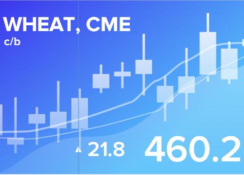 Прогноз ценовых колебаний с 18 по 22 марта 2019
