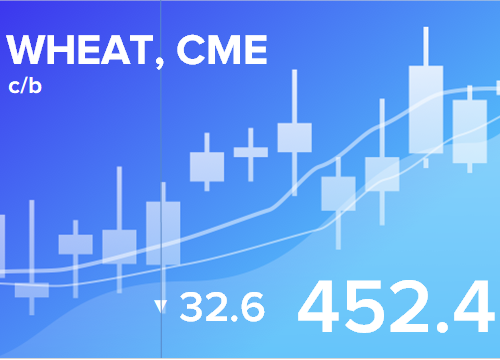 Прогноз ценовых колебаний с 4 по 8 марта 2019