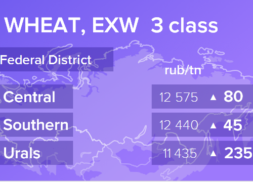 Пшеница. Цены EXW. Россия. Данные на 04.04.2019