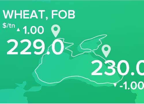 Пшеница. Цены FOB. Данные на 08.04.2019