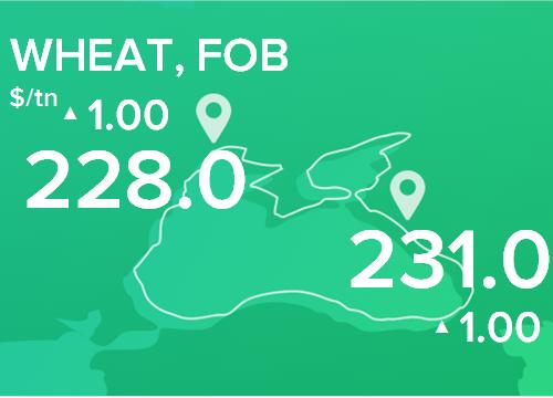 Пшеница. Цены FOB. Данные на 01.04.2019