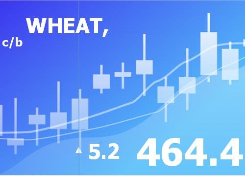 Прогноз ценовых колебаний с 15 по 19 апреля 2019
