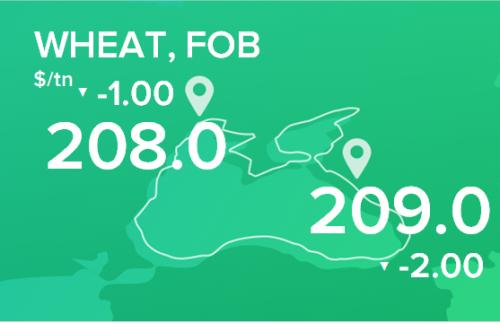 Пшеница. Цены FOB. Данные на 10.06.2019