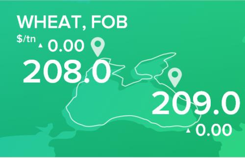 Пшеница. Цены FOB. Данные на 17.06.2019