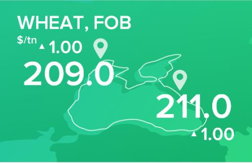 Пшеница. Цены FOB. Данные на 03.06.2019