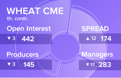 Отчет по открытому интересу. Пшеница, CME Group на 08.06.2019