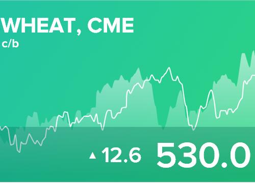 Ежедневный прогноз ценовых колебаний на 13 июня 2019