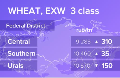 Пшеница. Цены EXW. Россия. Данные на 29.08.2019