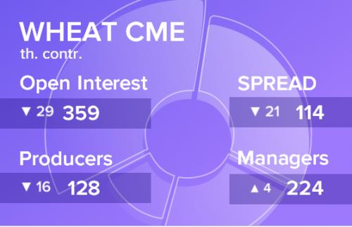 Отчет по открытому интересу. Пшеница, CME Group на 31.08.2019