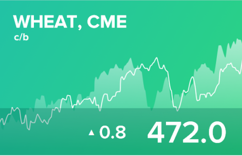 Ежедневный прогноз ценовых колебаний на 28 августа 2019