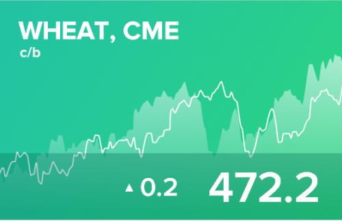 Ежедневный прогноз ценовых колебаний на 29 августа 2019