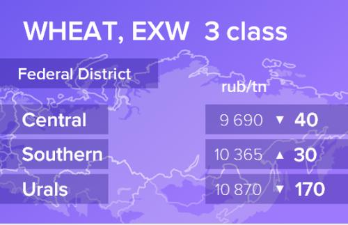 Пшеница. Цены EXW. Россия. Данные на 10.10.2019