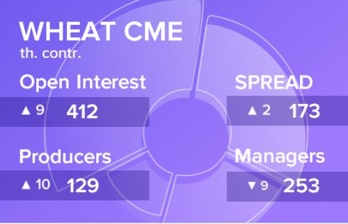 Отчет по открытому интересу. Пшеница, CME Group на 26.10.2019
