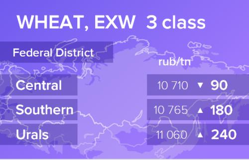 Пшеница. Цены EXW. Россия. Данные на 05.11.2019
