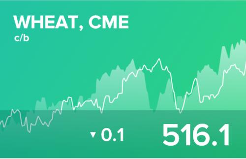 Ежедневный прогноз ценовых колебаний на 7 ноября 2019