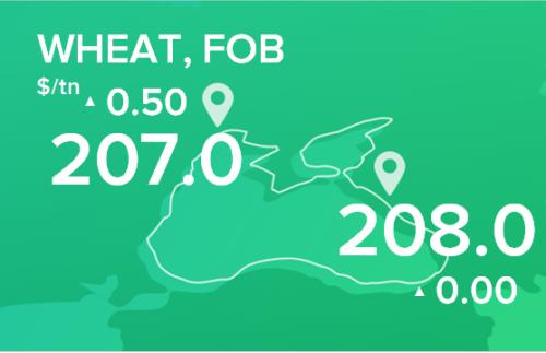 Пшеница. Цены FOB. Данные на 11.11.19