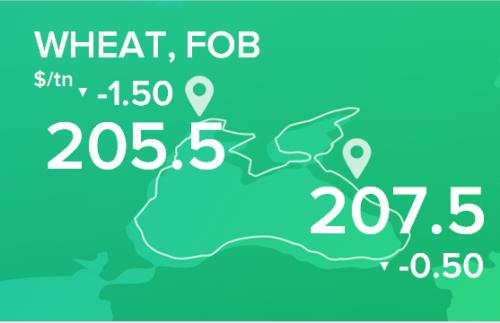 Пшеница. Цены FOB. Данные на 18.11.19