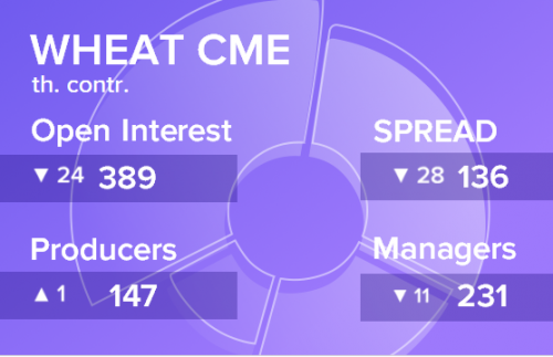 Отчет по открытому интересу. Пшеница, CME Group на 23.11.2019
