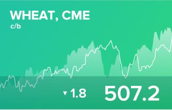 EXP.IDK.RU. Ежедневный прогноз ценовых колебаний на 15 ноября 2019