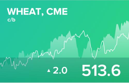 Ежедневный прогноз ценовых колебаний на 21 ноября 2019